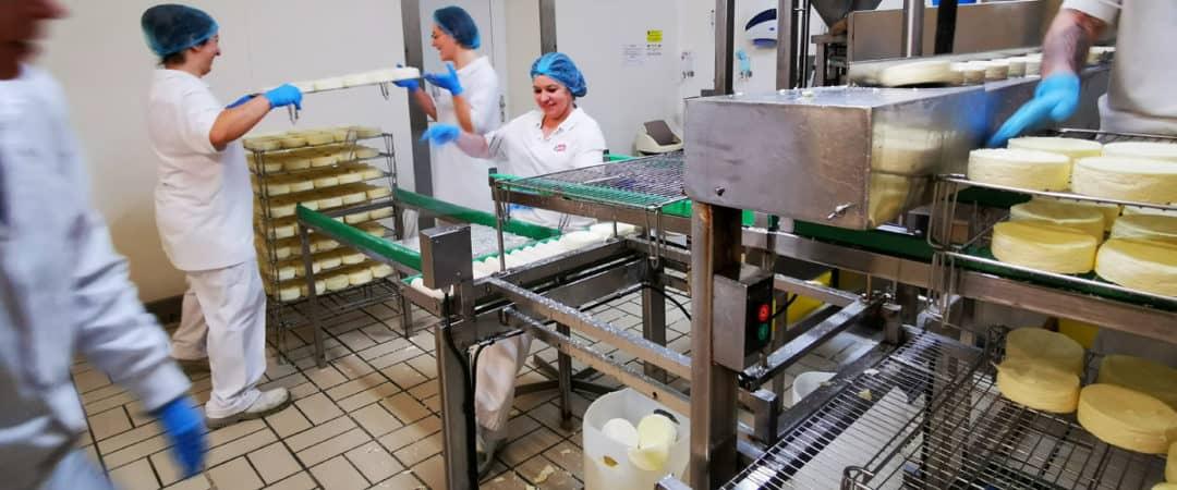 Из чего состоит молочный завод